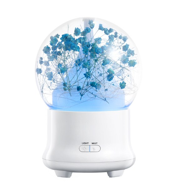 Preserved Flower Aroma Diffuser-HSJ29