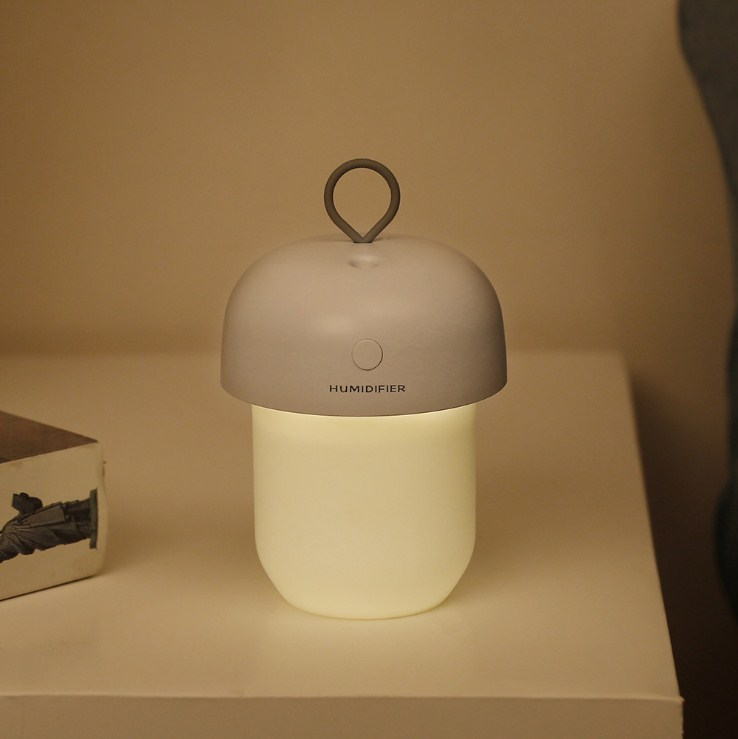 Alibaba Hot Sale Humidifier Diffuser - HSJ70